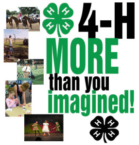 Cover photo for 4-H and the Politics of Living in America