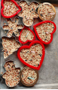 bird seed in cookie cutters