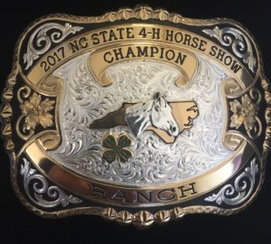 Cover photo for 2017 NC State 4-H Horse Show Class Results and Champions