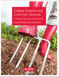 Cover to CG Handbook