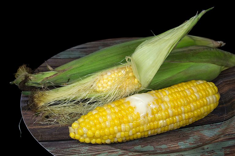 Fresh corn on the cob husked and not husked
