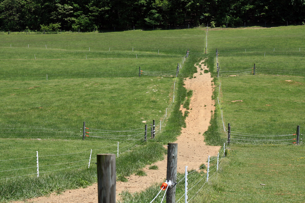 Pasture with poly wire sections