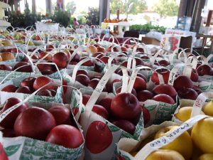 Apples in bags are ready for purchase at the NC Farmers Market.