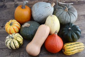 A pile of various winter squash