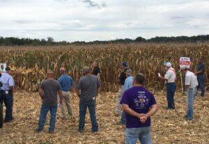Corn Variety Demonstration Plot